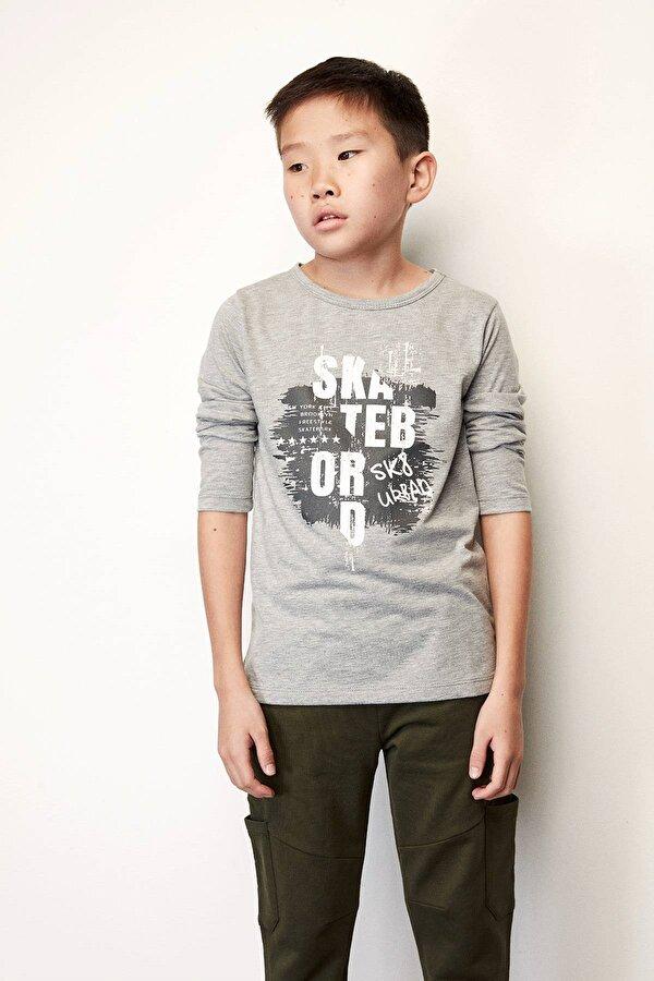 Resim Erkek Çocuk Gri T-Shirt