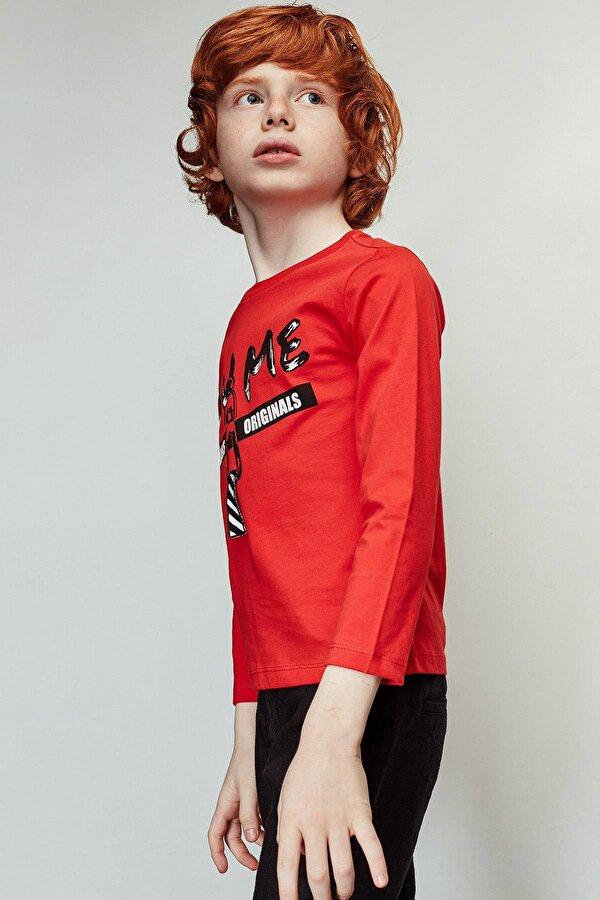 Resim Erkek Çocuk Nar Çiçeği T-Shirt