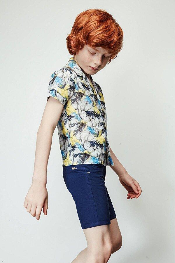 Resim Erkek Çocuk Desenli Gömlek
