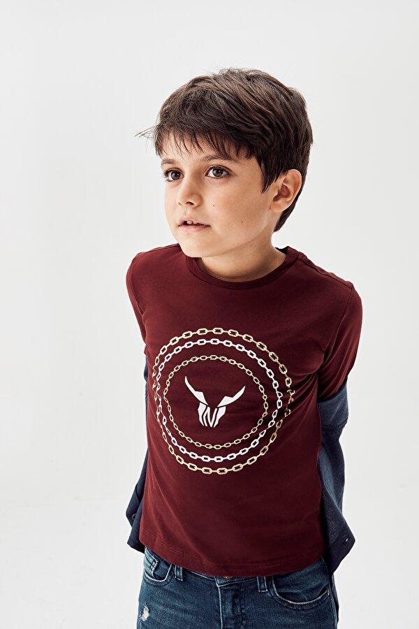 Resim Erkek Çocuk Bordo T-Shirt