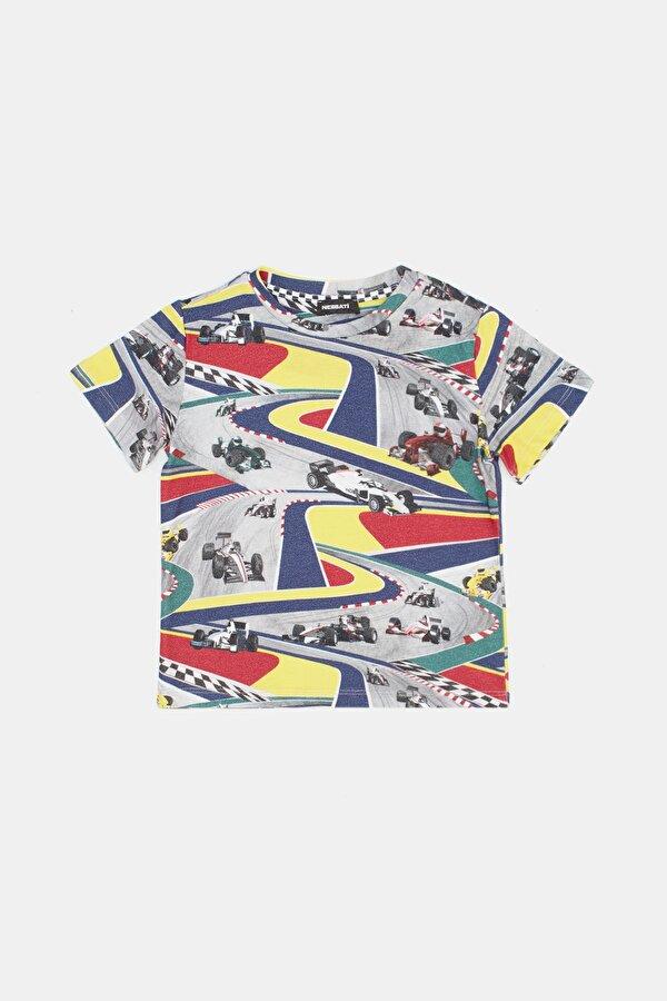Resim Erkek Çocuk Desenli T-Shirt