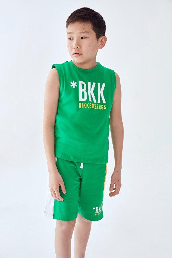 Resim Erkek Çocuk Yeşil T-Shirt Şort Takımı